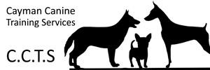 sponsor-logo-ctts2
