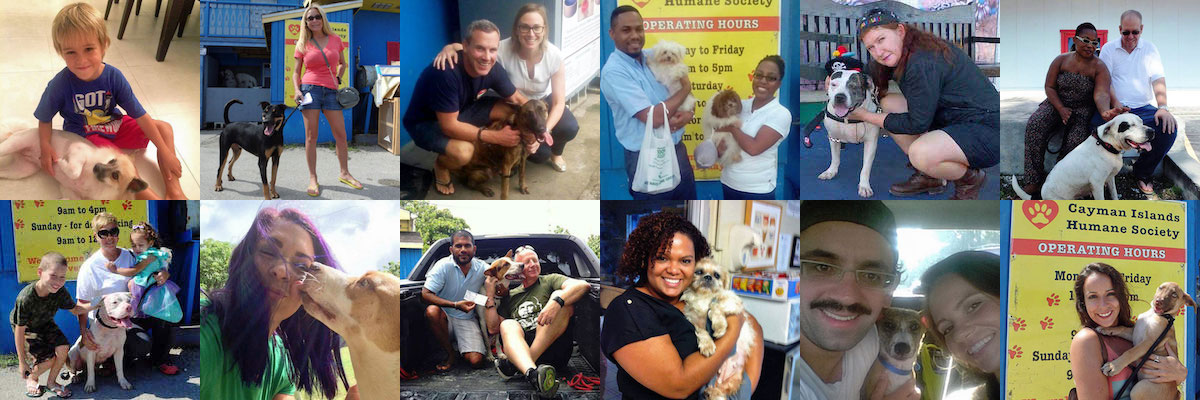 Adoptions Collage