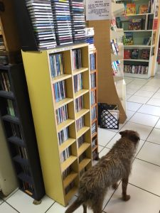 Cayman Islands Humane Society Book Loft